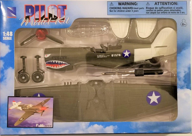 Pilot Model Kit 1:48 Scale P-40 20215 F2
